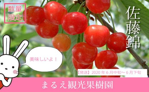 No.0499 <生産者に希望の光を!>さくらんぼ 佐藤錦バラ詰め1kg(M~Lサイズ)