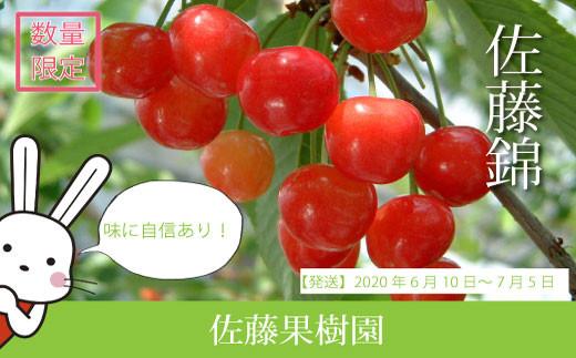 No.0477 さくらんぼ 佐藤錦1kg(バラ詰め)