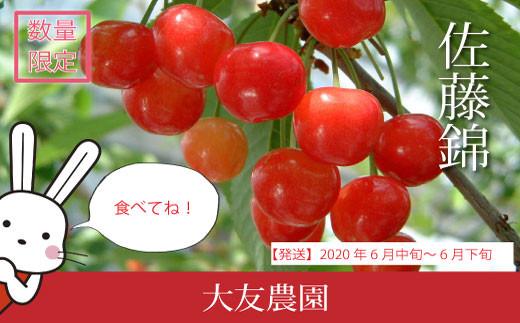 No.0511 佐藤錦バラ詰めM~2Lサイズ混合 1kg