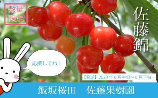 No.0538 福島のさくらんぼ(佐藤錦)バラ詰め1kg