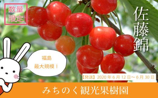 No.0495 <生産者に希望の光を!>さくらんぼ 佐藤錦1kg バラ詰め(S~Lサイズ)