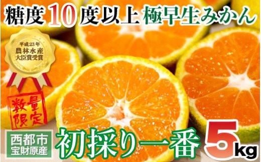 極早生みかん「初採一番」5kg 宮崎県西都産【先行予約】<1-174>