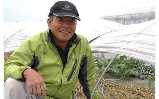 おっきなメロン「みさきグリーン」  山田農園がお届けします!