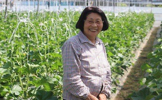 「種から育て上げるマスクメロン」  あべ農園がお届けします!