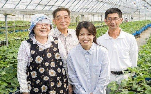 淡いピンク色のイチゴ「淡雪」と「紅ほっぺ」  小川農園がお届けします!