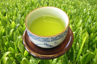 深蒸し煎茶「松阪茶」2018年の「新茶」
