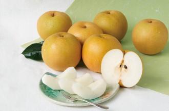 日本一の梨の町「湯梨浜町」からフルーツ便り