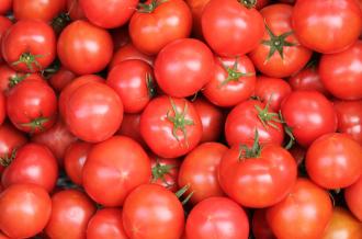 高知県日高村 村自慢のシュガートマト!