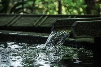 「美人の湯」月岡温泉と旬の果実と野菜で楽しむ新発田の春