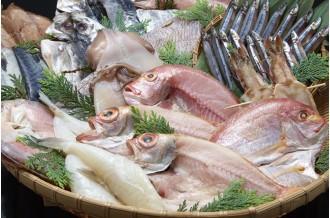 長崎県は漁獲量全国2位!新鮮な魚介をつかった海産物をお届け!