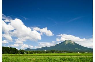 豊かな自然の恵み。「大山ブランド」の品々を紹介します。