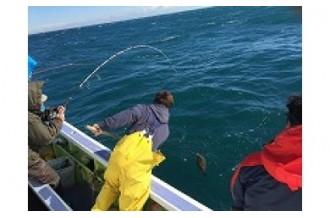 人気の釣り船乗船券やリゾート宿泊券まで!いすみ市を満喫!