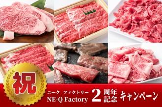 ニークファクトリー2周年記念キャンペーン(~11/15まで)