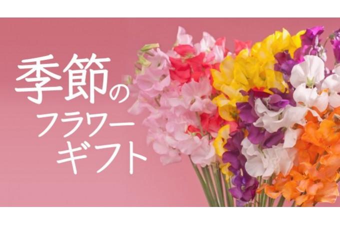 ライフイベントを彩る季節のお花特集