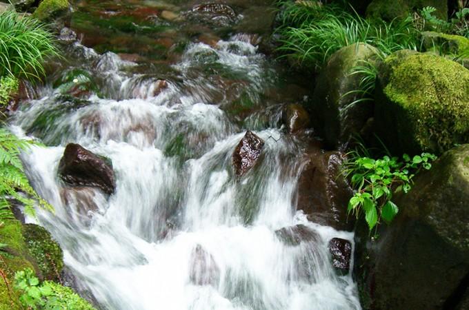 名水の里 東吾妻町よりおいしい水をお届けします