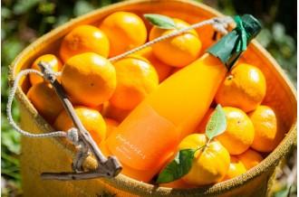 みかんは冬だけじゃない!年中通して楽しめる柑橘加工品をお届けします!