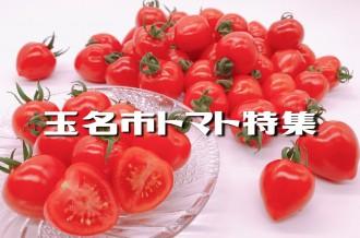 玉名産のおいしいトマトをご紹介!