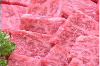 画像は「飛騨牛A5等級 焼肉用400g(モモ肉)」です。