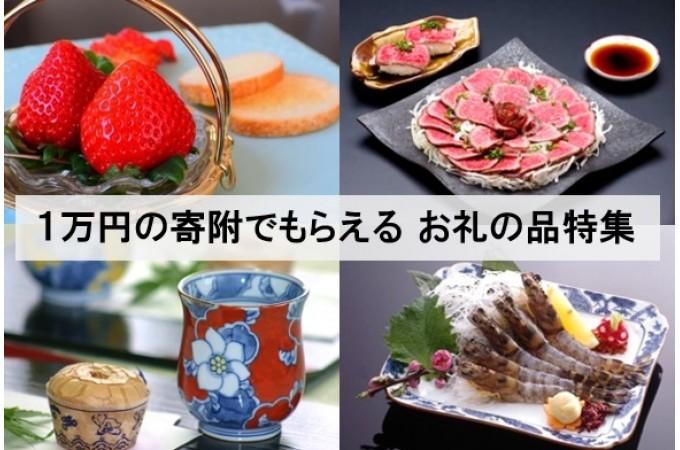 初めての方にもおすすめ! 1万円の寄附でもらえる お礼の品特集
