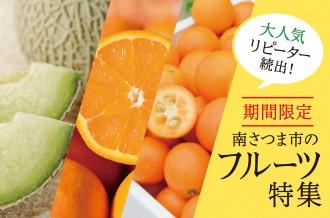 旬のフルーツ先行予約メロン・たんかん・金柑