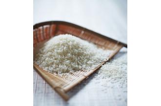 庄内米 有機栽培米 特別栽培米 合鴨農法 玄米 つや姫 ひとめぼれ コシヒカリ