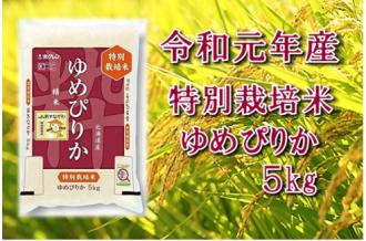 【第6回米のヒット甲子園大賞受賞】令和元年産 JA新すながわ産 特栽米ゆめぴりか5キログラム