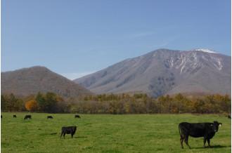 自然に優しい循環型。クリーンでエコな畜産農業。