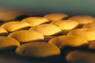 シュガーロード佐賀の銘菓めぐり