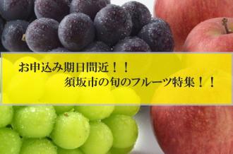 果物 お申込み期日間近
