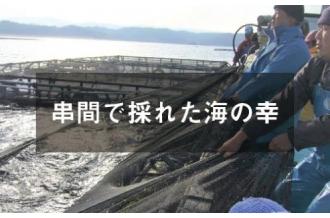串間市で採れた海の幸特集