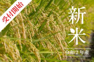 米沢のお米で作ったおにぎりは美味しいね