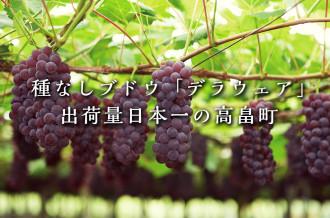山形県高畠町は寒暖差が大きな気候とミネラルが豊富な土壌に恵まれ、りんごやラ・フランス、さくらんぼなどの果物が育てられています。