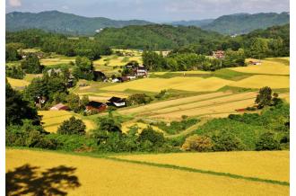 祝!日本農業遺産認定