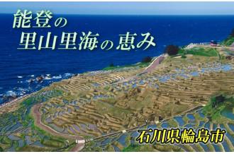 新鮮な魚介類、自然豊かな土壌で育つお米、清らかな水で出来る日本酒…能登の里山里海がもたらす多くの恵みを皆様へお届けします。
