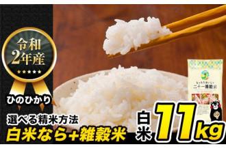 熊本県産【令和2年産新米】『ツヤ』『香り』『粘り』最高級の三拍子揃ったひのひかり