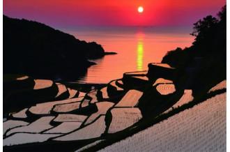 浜野浦の棚田の夕日