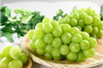 甲斐市の果物(ぶどう、シャインマスカット、桃の画像です。)