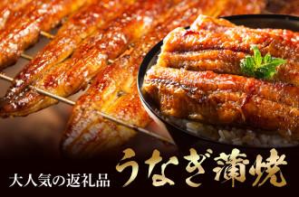 うなぎ(鰻)蒲焼