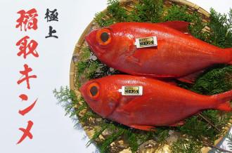 ~ 極上ブランド~ 「稲取キンメ」 特集