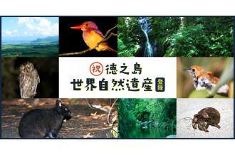 徳之島 世界自然遺産登録特集