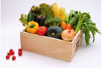 安曇野から元気をお届け!新鮮な野菜・果物特集