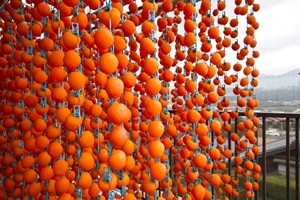 風物詩「柿のれん」