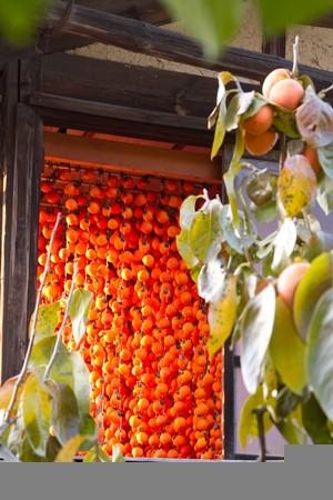 柿のれんの風景(晩秋)