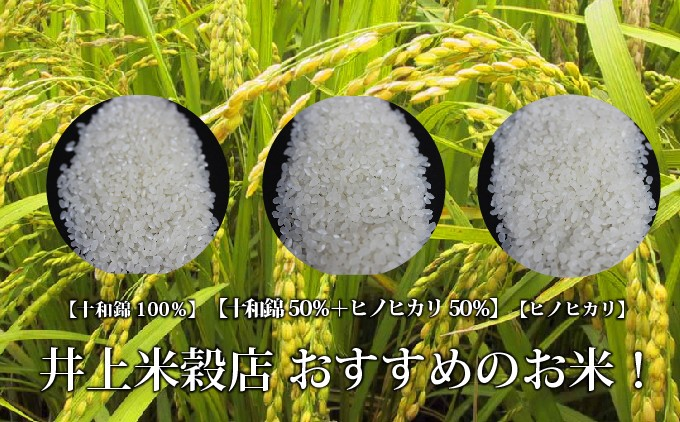 3種類の香るお米を堪能できる贅沢なセット