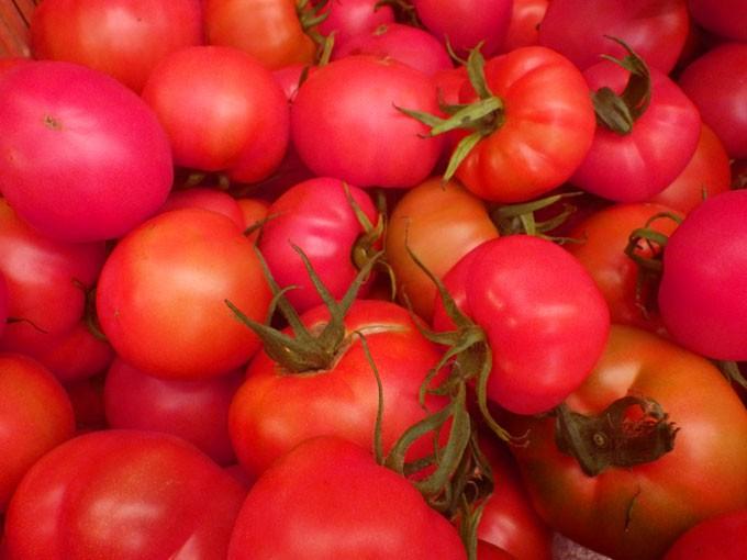 トマト丁寧に絞っています。無添加 無調整 果汁100%