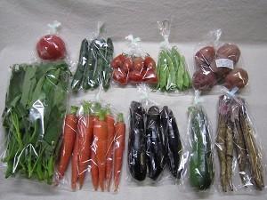 8月の有機野菜セットの例
