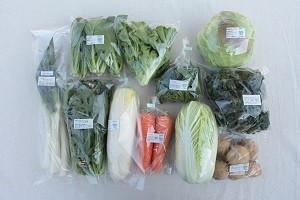 2月の有機野菜セットの例