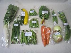 5月の有機野菜セットの例