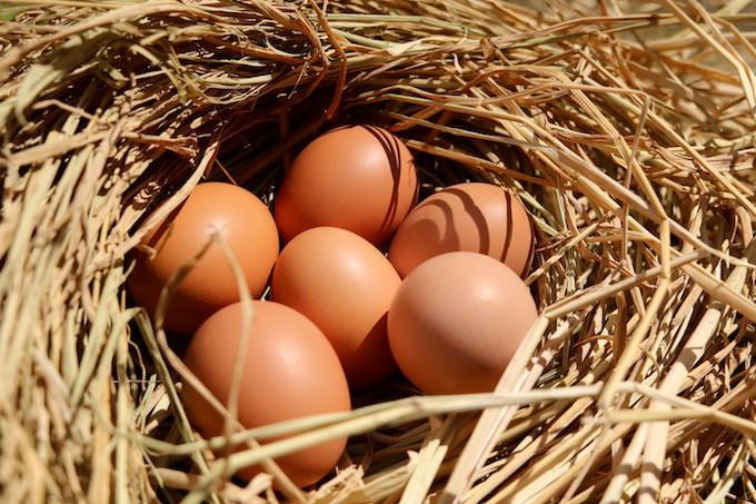 ビタミンたっぷりの赤卵