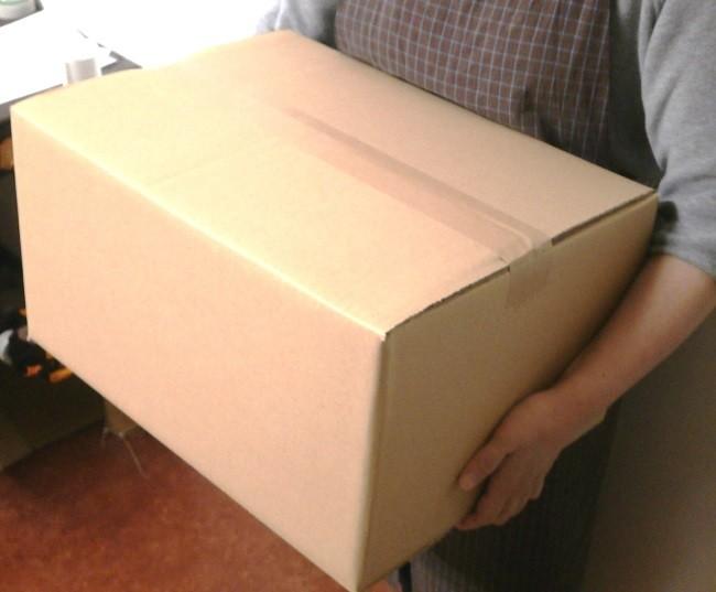 このようなサイズの箱に詰めてお届けします!